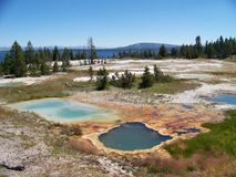 Pond in Yellowstone royalty free stock images