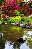 Pond in zen garden royalty free stock photo