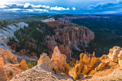 Ponderosa Canyon lid by Beautiful Sunset light Stock Images