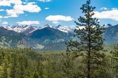 Ponderosa Pines Scenic Byway, Idaho royalty free stock photo
