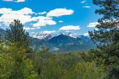 Ponderosa Pines Scenic Byway, Idaho Royalty Free Stock Photos