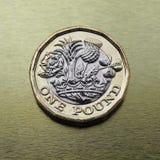 1 pondmuntstuk, het Verenigd Koninkrijk over goud Stock Foto