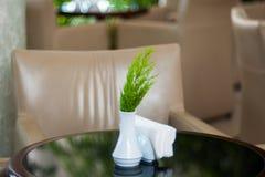 Pondo o vaso de vidro da flor sobre a tabela do café Plantas na tabela do café imagem de stock royalty free
