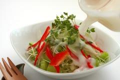 Pondo a vinagreta sobre a salada Imagem de Stock
