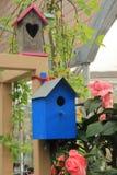 Pondoir dans le rose, le vert ou le bleu entre les plantes et les fleurs Images libres de droits