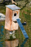 Boîte en bois de nid de canard sur l'étang Images stock