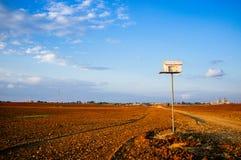 Pondoir de hibou de grange Image libre de droits