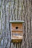 Pondoir sur un arbre Photo libre de droits