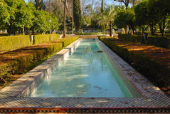 Ponds. In Maria Luisa Park, located in Seville (Spain). It is the public garden or park of the city's most famous and one of its green lungs. Recently it has Royalty Free Stock Images