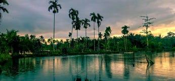 Ponds of fish and geese in the sky. At Hapung Torop Sosa on Padang Lawas North Sumatera stock photos