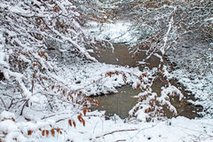 Ponds with patches of snow. Royalty Free Stock Photo