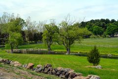 Pondside at farm Royalty Free Stock Photography