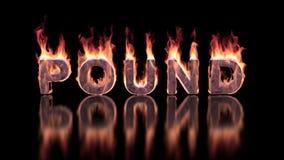 Pondwoord het branden in vlammen op de glanzende oppervlakte, financiële 3D achtergrond stock footage