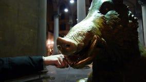 Pone el dinero en el porcellino de Florencia almacen de video