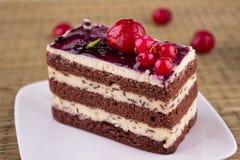 _poner crema cereza torta en vector Fotos de archivo libres de regalías