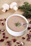 _poner crema sopa Fotos de archivo libres de regalías