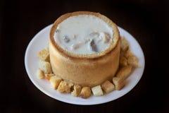 _poner crema sopa con pollo y seta Imagen de archivo libre de regalías