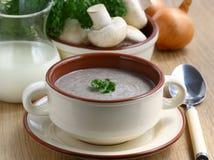 _poner crema sopa con seta Imagen de archivo libre de regalías