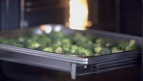 Poner el bróculi en el horno almacen de metraje de vídeo