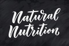 Poner letras a cita, gran diseño para cualquier propósitos Lema del vector Comida sabrosa de la dieta del desayuno Pasto, nutrici libre illustration