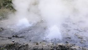 Pong Dued Geyser. stock video
