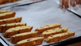 Ponga el biscotti en una bandeja del horno metrajes