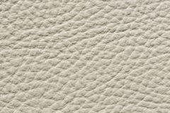 Ponga en contraste la textura de cuero desigual en color ligero foto de archivo