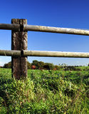 Ponga la cerca y los caballos en un cercado Foto de archivo
