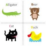 Ponga letras a un alfabeto de Cat Bear Duck Zoo del cocodrilo de B C D ABC inglés con las tarjetas de la educación de los animale Imagenes de archivo