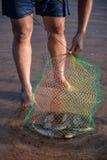 Ponga los pescados en la rejilla Fotografía de archivo