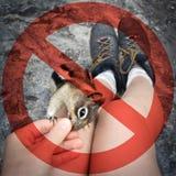 ¡Ponga por favor la fauna de la alimentación del ` t! Foto de archivo libre de regalías