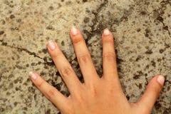 Ponga su mano en una roca Foto de archivo