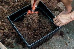 Ponga una jardinera fotos de archivo libres de regalías