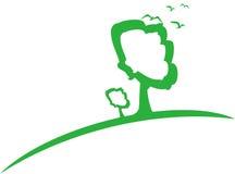 Ponga verde el árbol Fotos de archivo libres de regalías