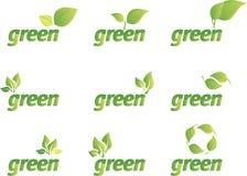 Ponga verde el conjunto de la hoja libre illustration