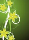 Ponga verde el diseño floral Fotos de archivo