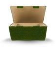 Ponga verde el empaquetado Fotos de archivo