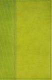 Ponga verde el fondo de cuero Imagenes de archivo