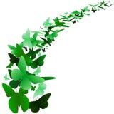 Ponga verde el fondo de la mariposa ilustración del vector