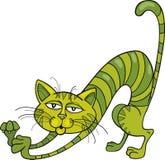 Ponga verde el gato Imagen de archivo