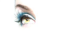 Ponga verde el ojo pardo Imagen de archivo