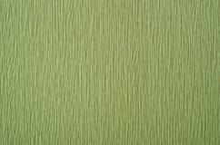 Ponga verde el papel pintado del fondo Fotos de archivo libres de regalías