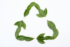 Ponga verde el reciclaje de símbolo Fotos de archivo libres de regalías