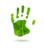 ponga verde Handprint Fotos de archivo