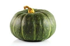 Ponga verde la calabaza Imagen de archivo libre de regalías