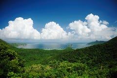 Ponga verde la colina del bosque con el cielo azul y las nubes blancas Fotografía de archivo