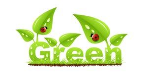 Ponga verde la escritura de la etiqueta stock de ilustración