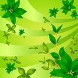 Ponga verde la hoja ilustración del vector