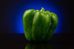 Ponga verde la pimienta dulce en fondo azul Imagen de archivo libre de regalías