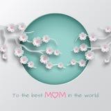 Ponga verde la rama adornada círculo cuted de las flores de la cereza en b blanco Imagen de archivo libre de regalías
